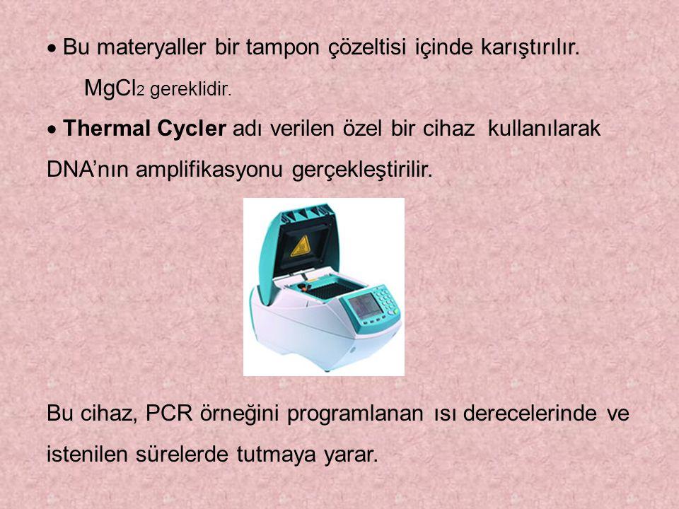  Bu materyaller bir tampon çözeltisi içinde karıştırılır. MgCl 2 gereklidir.  Thermal Cycler adı verilen özel bir cihaz kullanılarak DNA'nın ampli