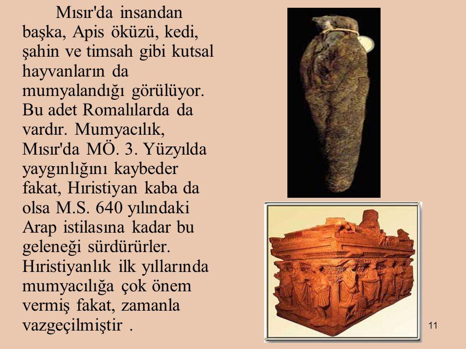 11 Mısır da insandan başka, Apis öküzü, kedi, şahin ve timsah gibi kutsal hayvanların da mumyalandığı görülüyor.