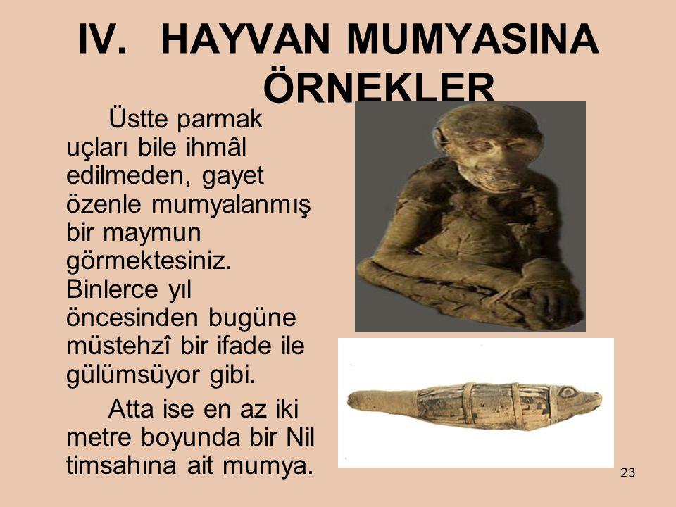 23 IV.HAYVAN MUMYASINA ÖRNEKLER Üstte parmak uçları bile ihmâl edilmeden, gayet özenle mumyalanmış bir maymun görmektesiniz.
