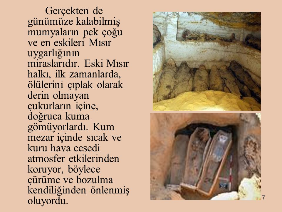 7 Gerçekten de günümüze kalabilmiş mumyaların pek çoğu ve en eskileri Mısır uygarlığının miraslarıdır.