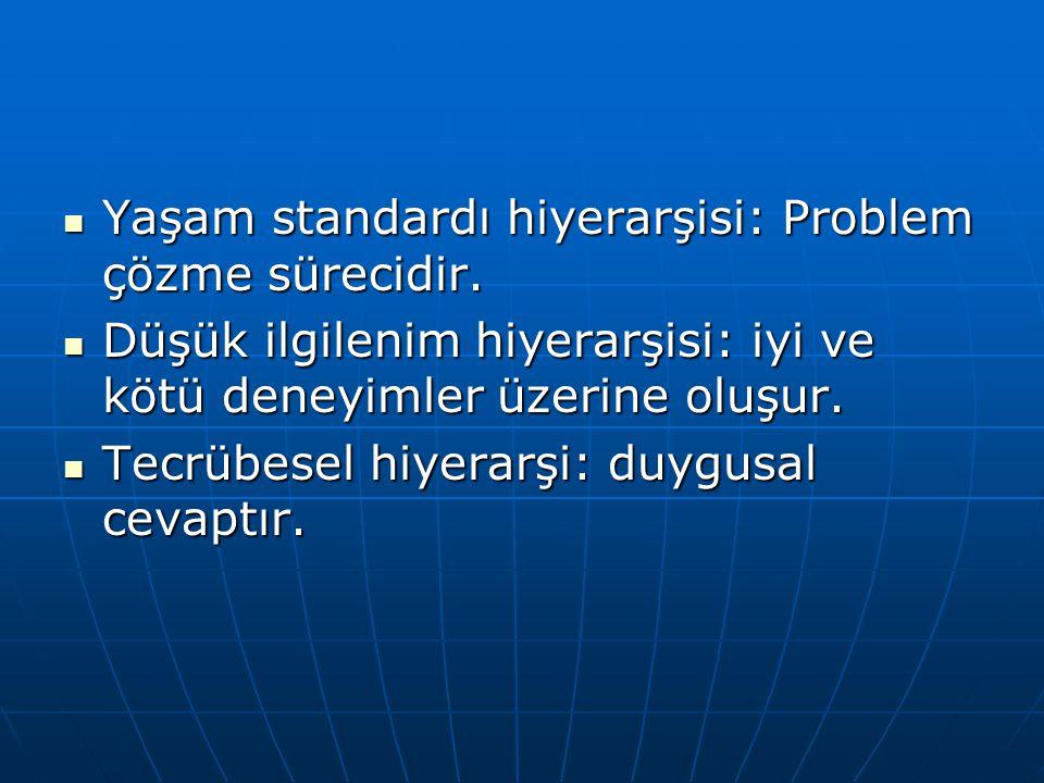 Yaşam standardı hiyerarşisi: Problem çözme sürecidir.