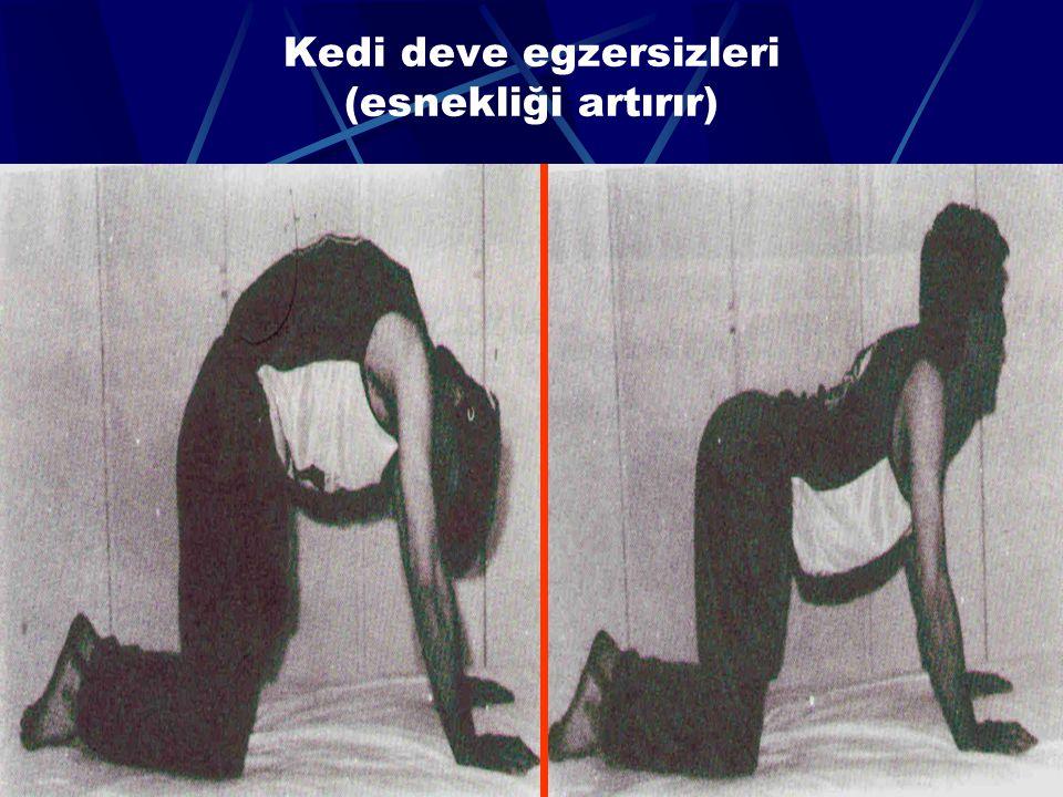 64 Emekleme egzersizi (spinal kanalı gerer)