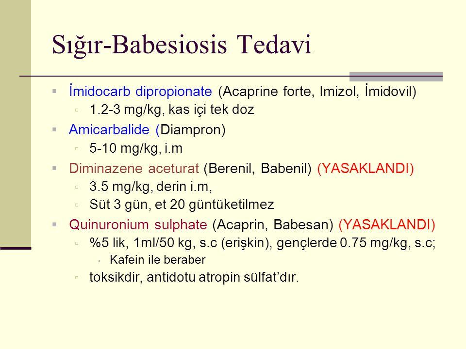 Sığır-Babesiosis Tedavi  İmidocarb dipropionate (Acaprine forte, Imizol, İmidovil)  1.2-3 mg/kg, kas içi tek doz  Amicarbalide (Diampron)  5-10 mg