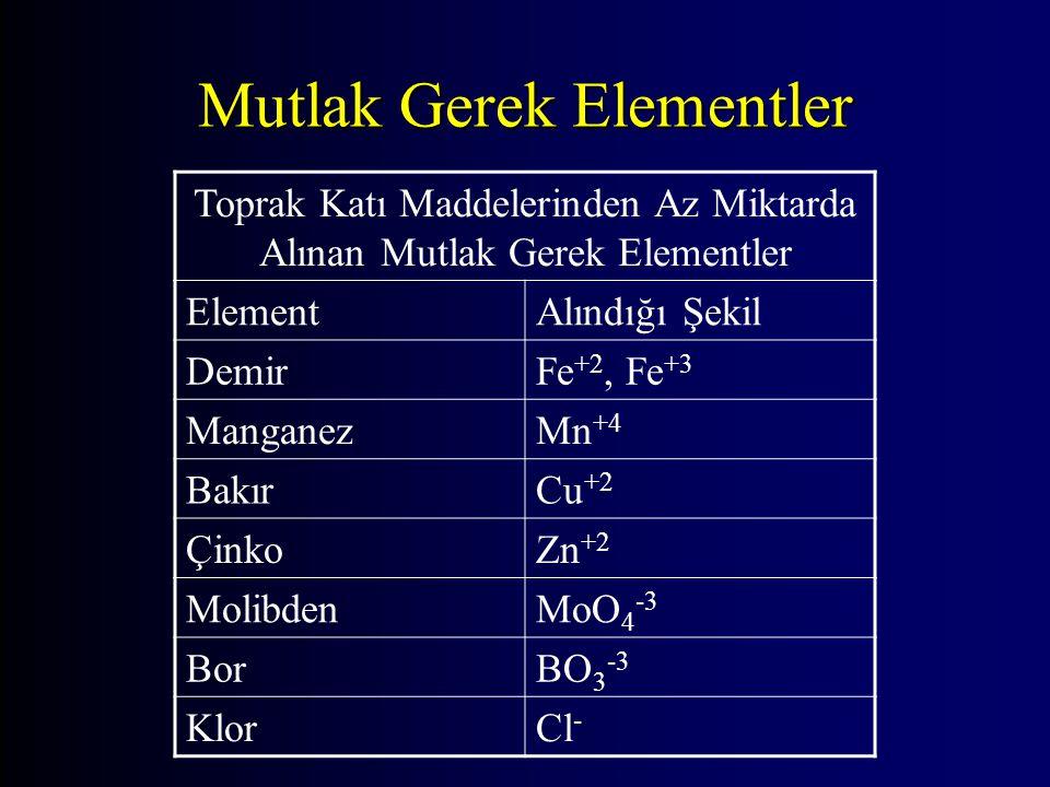 Mutlak Gerek Elementler Toprak Katı Maddelerinden Az Miktarda Alınan Mutlak Gerek Elementler ElementAlındığı Şekil DemirFe +2, Fe +3 ManganezMn +4 Bak