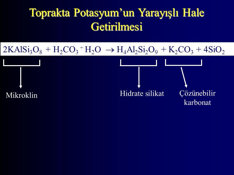 Toprakta Potasyum'un Yarayışlı Hale Getirilmesi 2KAlSi 3 O 8 + H 2 CO 3 + H 2 O  H 4 Al 2 Si 2 O 9 + K 2 CO 3 + 4SiO 2 Mikroklin Çözünebilir karbonat