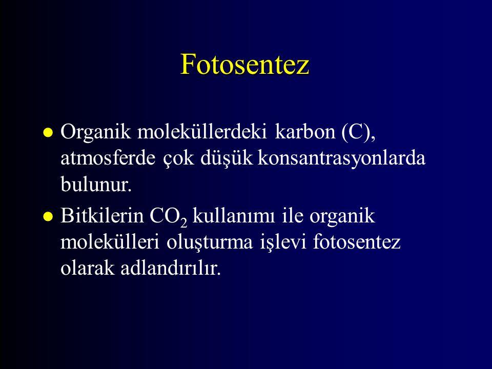 Fotosentez l Organik moleküllerdeki karbon (C), atmosferde çok düşük konsantrasyonlarda bulunur. l Bitkilerin CO 2 kullanımı ile organik molekülleri o