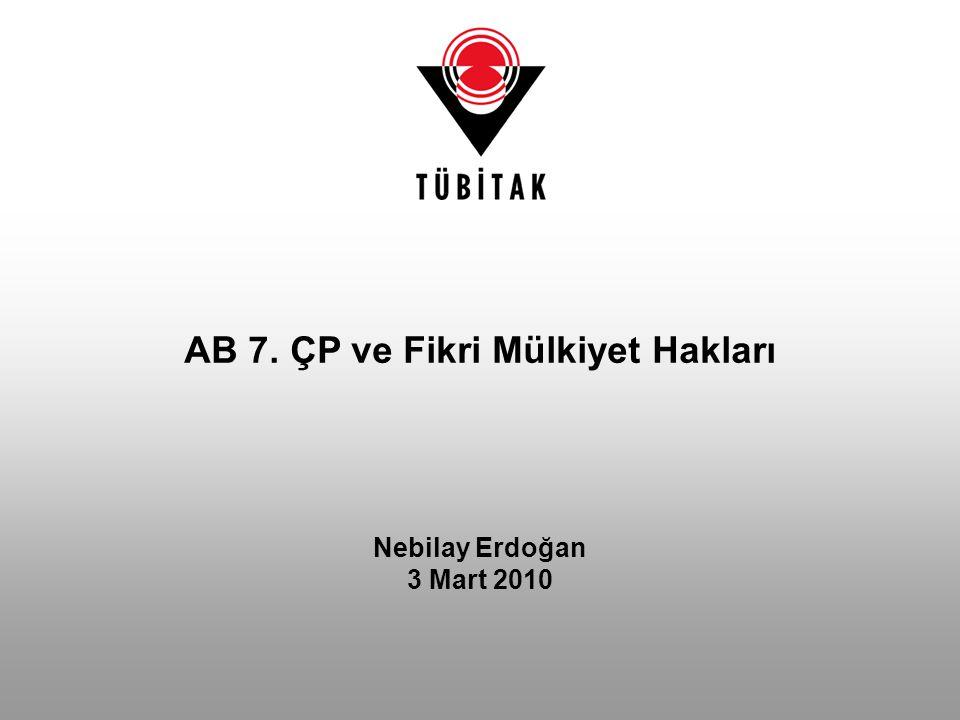 Nebilay Erdoğan 3 Mart 2010 AB 7. ÇP ve Fikri Mülkiyet Hakları