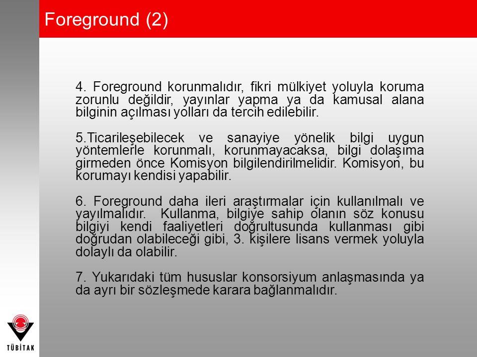 Foreground (2) 4. Foreground korunmalıdır, fikri mülkiyet yoluyla koruma zorunlu değildir, yayınlar yapma ya da kamusal alana bilginin açılması yollar