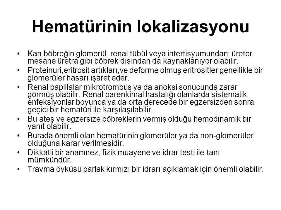 Ayırıcı tanı Çocuklarda hematüri nedenleri Glomerüler hastalıklar: IgA nefropatisi, benign familyal hematüri, Alport Sendromu Akut poststreptokoksik glomerulonefrit, membranoproliferatif glomerülonefrit SLE, membranöz glomerülonefrit Henoch Schönlein Purpurası (HSP), hemolitik üremik sendrom Enfeksiyon: Bakreiyal,viral (adenovirus), tbc Hematolojik Orak hücreli anemi, von Willebrand hastalığı Renal ven trombozu, trombositopeni Nefrolitiazis ve hiperkalsiüri Yapısal anomaliler Konjenital anomaliler, polikistik böbrek hastalıkları, vasküler anomaliler (AVM,hemanjiom) Travma Tümör Tedaviye bağlı Penisilin, siklofosfamid, klorpromazin, torazin