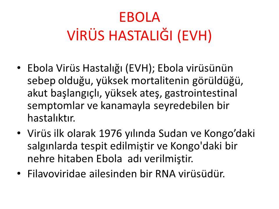 EBOLA VİRÜS HASTALIĞI (EVH) Ebola Virüs Hastalığı (EVH); Ebola virüsünün sebep olduğu, yüksek mortalitenin görüldüğü, akut başlangıçlı, yüksek ateş, g