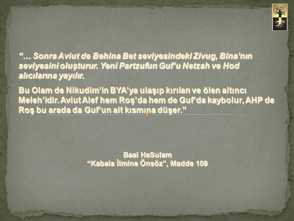 """""""… Sonra Aviut de Behina Bet seviyesindeki Zivug, Bina'nın seviyesini oluşturur. Yeni Partzufun Guf'u Netzah ve Hod alıcılarına yayılır. Bu Olam de Ni"""