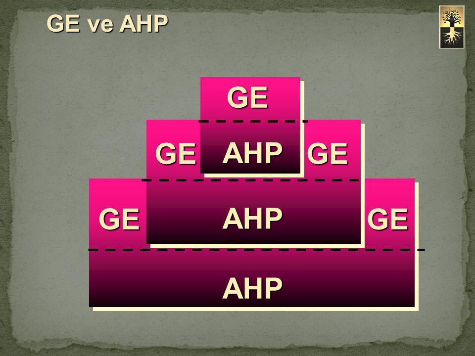 GE ve AHP GEGEGE GE GE AHP AHP AHP