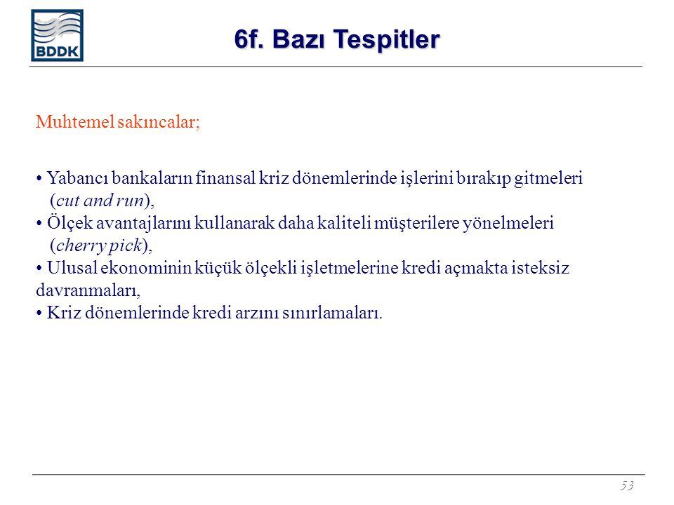 53 Muhtemel sakıncalar; Yabancı bankaların finansal kriz dönemlerinde işlerini bırakıp gitmeleri (cut and run), Ölçek avantajlarını kullanarak daha ka