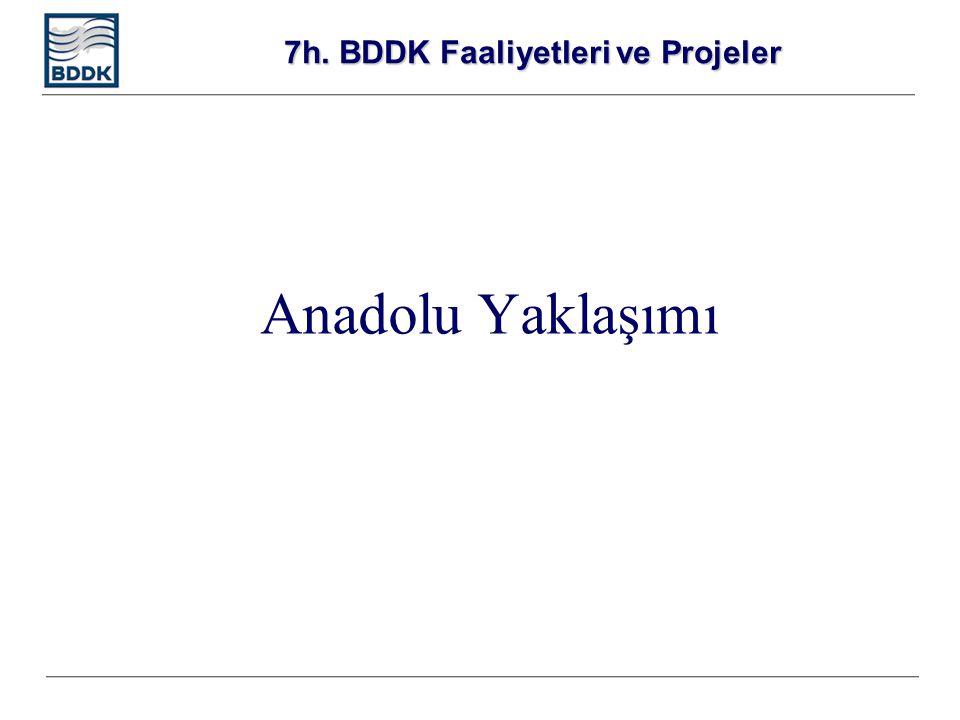 7h. BDDK Faaliyetleri ve Projeler Anadolu Yaklaşımı