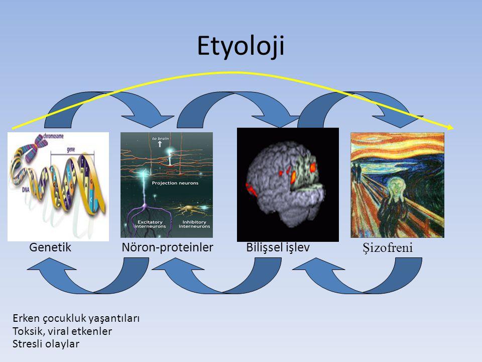 Etyoloji Nöron-proteinlerGenetikBilişsel işlev Şizofreni Erken çocukluk yaşantıları Toksik, viral etkenler Stresli olaylar