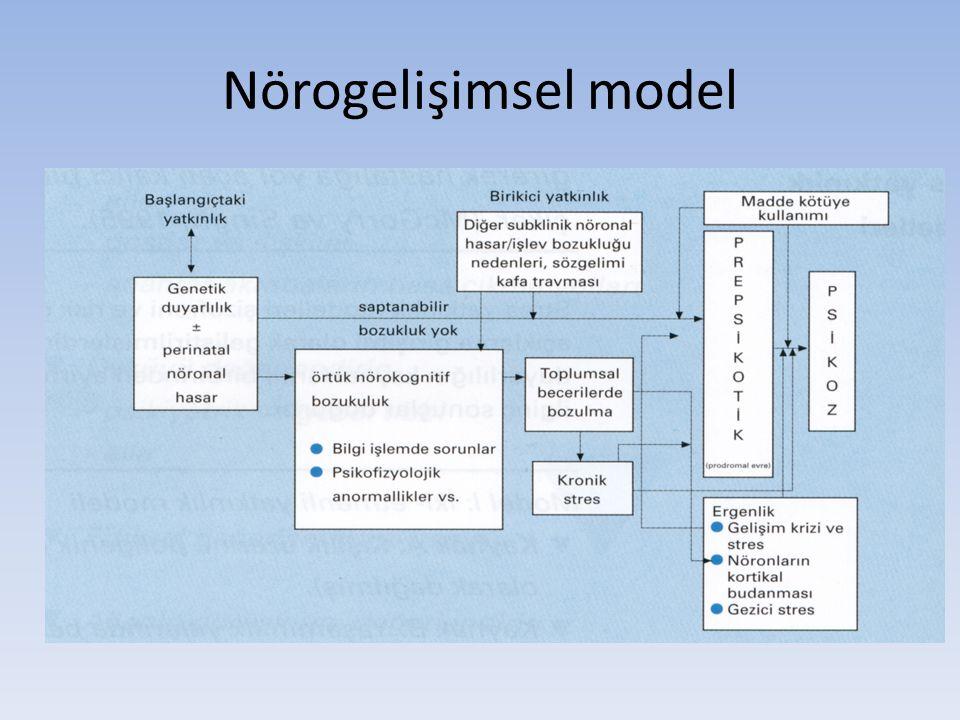 Nörogelişimsel model
