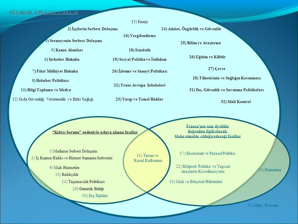 1) Malların Serbest Dolaşımı 3) İş Kurma Hakkı ve Hizmet Sunumu Serbestisi 9) Mali Hizmetler 11) Tarım ve Kırsal Kalkınma 13) Balıkçılık 14) Taşımacıl