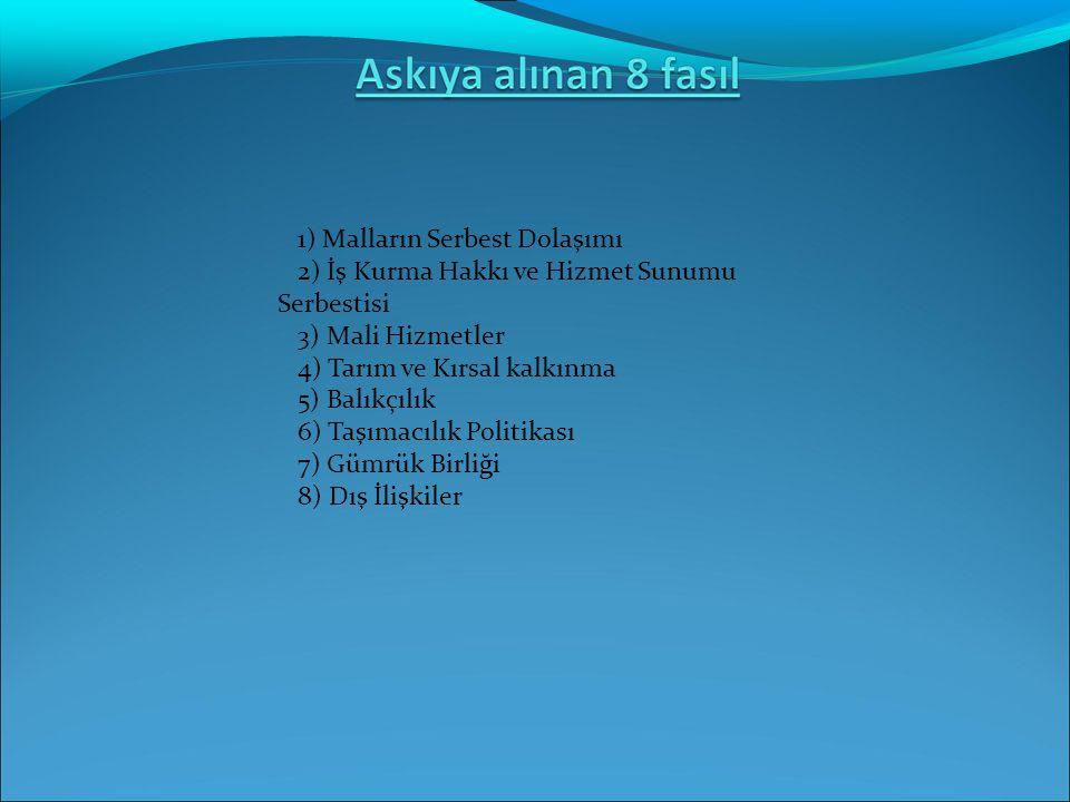 1) Malların Serbest Dolaşımı 2) İş Kurma Hakkı ve Hizmet Sunumu Serbestisi 3) Mali Hizmetler 4) Tarım ve Kırsal kalkınma 5) Balıkçılık 6) Taşımacılık