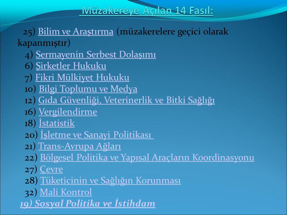 Gümrük Birliği Türkiye için de AB için de başarılı olmuştur.