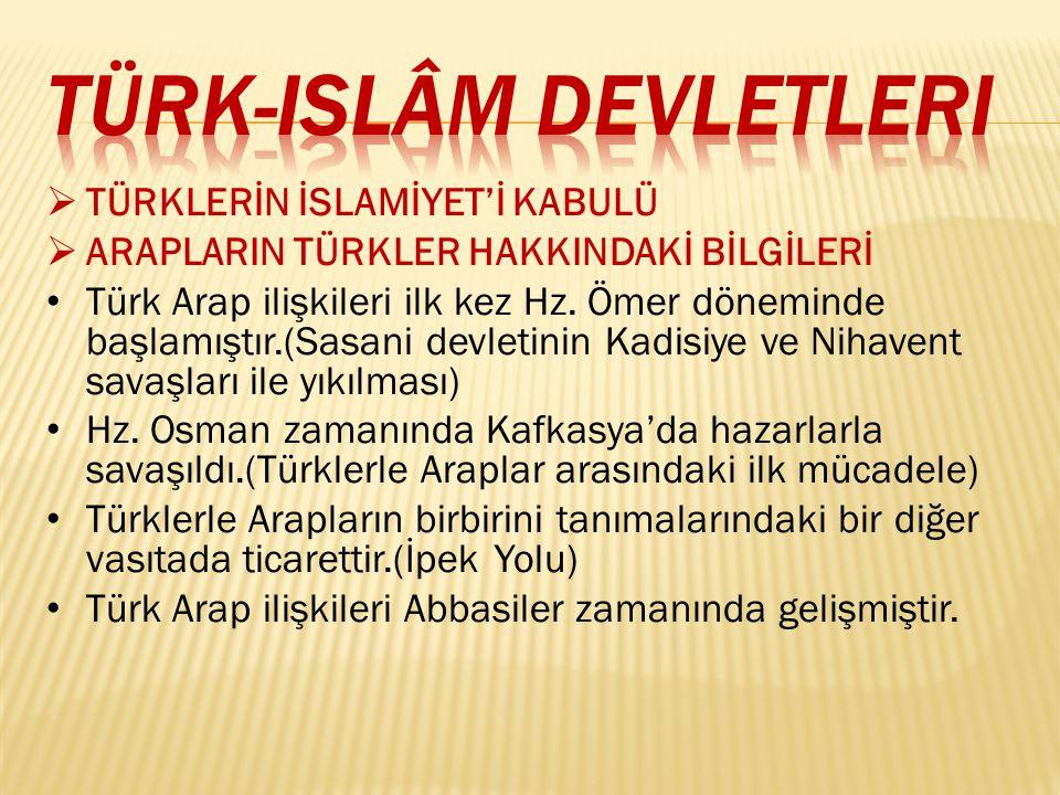Emeviler döneminde islam ordularının Türk topraklarına sık sık akınlar yaptıkları bir devre olarak karşımıza çıkmıştır.