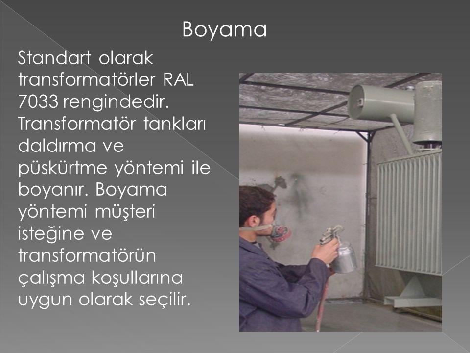 Boyama Standart olarak transformatörler RAL 7033 rengindedir.