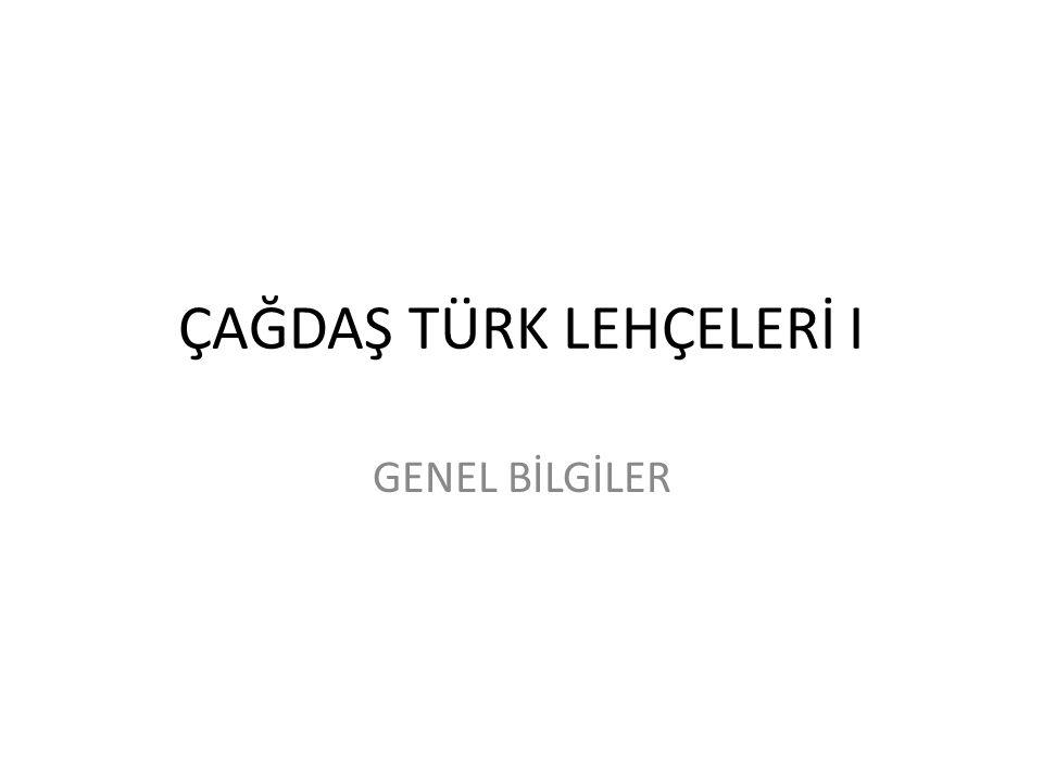 TÜRKİYE'DE VE DÜNYADA TÜRKOLOJİ ÇALIŞMALARI Türk dilinin sözlüksel ve dilbilgisel bakımdan incelenmesi Kaşgarlı Mahmut'un Divanın yanında henüz ele geçmeyen bir dilbilgisi kitabıyla başlar.