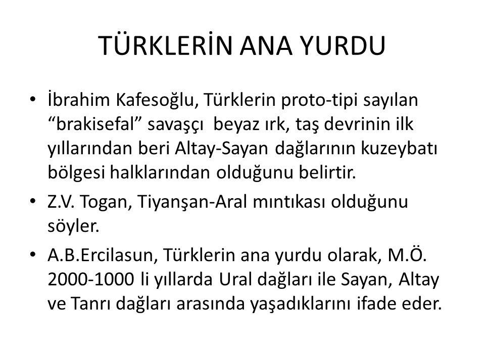 TÜRKLERİN ANA YURDU İbrahim Kafesoğlu, Türklerin proto-tipi sayılan brakisefal savaşçı beyaz ırk, taş devrinin ilk yıllarından beri Altay-Sayan dağlarının kuzeybatı bölgesi halklarından olduğunu belirtir.