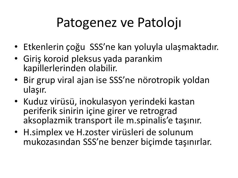Patogenez ve Patolojı Etkenlerin çoğu SSS'ne kan yoluyla ulaşmaktadır. Giriş koroid pleksus yada parankim kapillerlerinden olabilir. Bir grup viral aj