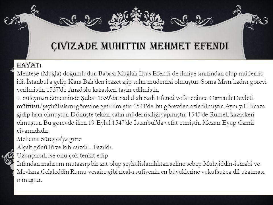 Çivizade Muhittin Mehmet Efendi Hayat ı Menteşe (Muğla) doğumludur. Babası Muğlalı İlyas Efendi de ilmiye sınıfından olup müderris idi. İstanbul'a gel