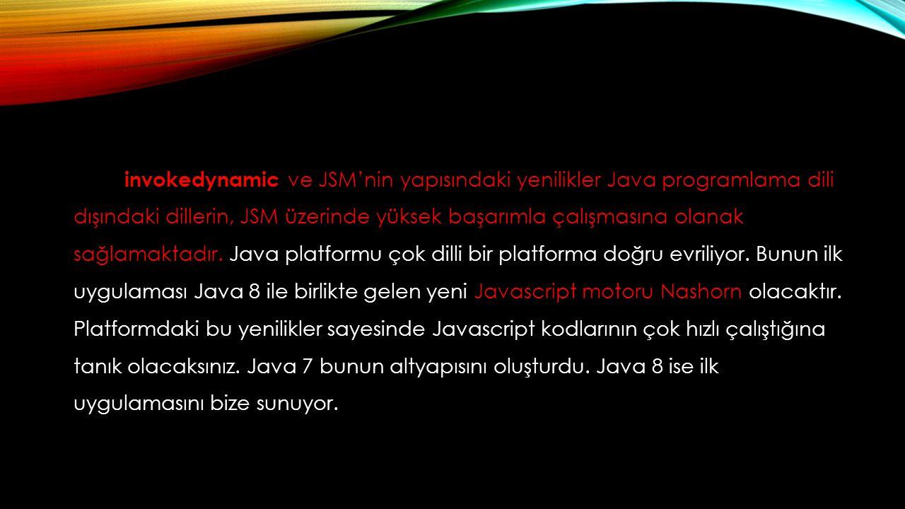 invokedynamic ve JSM'nin yapısındaki yenilikler Java programlama dili dışındaki dillerin, JSM üzerinde yüksek başarımla çalışmasına olanak sağlamaktad