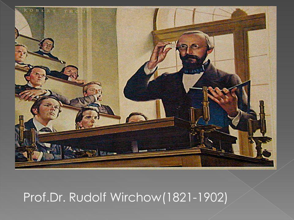 Prof.Dr. Rudolf Wirchow(1821-1902)