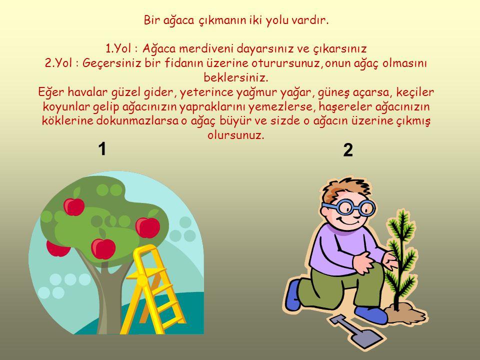 Bir ağaca çıkmanın iki yolu vardır. 1.Yol : Ağaca merdiveni dayarsınız ve çıkarsınız 2.Yol : Geçersiniz bir fidanın üzerine oturursunuz, onun ağaç olm