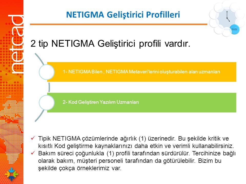 NETIGMA Geliştirici Profilleri 2 tip NETIGMA Geliştirici profili vardır.