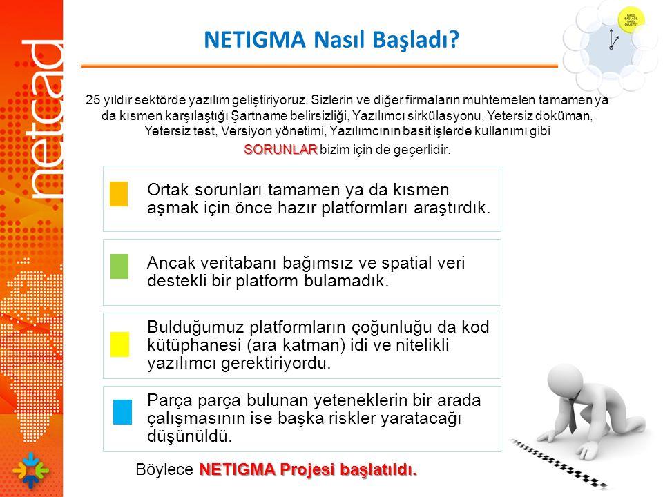 NETIGMA Nasıl Başladı. NETIGMA Projesi başlatıldı.