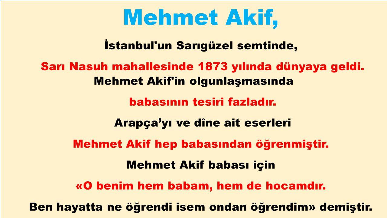 Mehmet Akif, İstanbul'un Sarıgüzel semtinde, Sarı Nasuh mahallesinde 1873 yılında dünyaya geldi. Mehmet Akif'in olgunlaşmasında babasının tesiri fazla