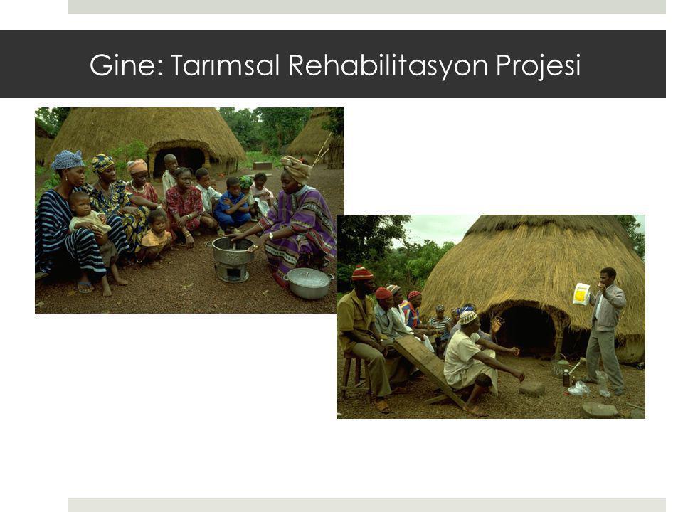 Gine: Tarımsal Rehabilitasyon Projesi