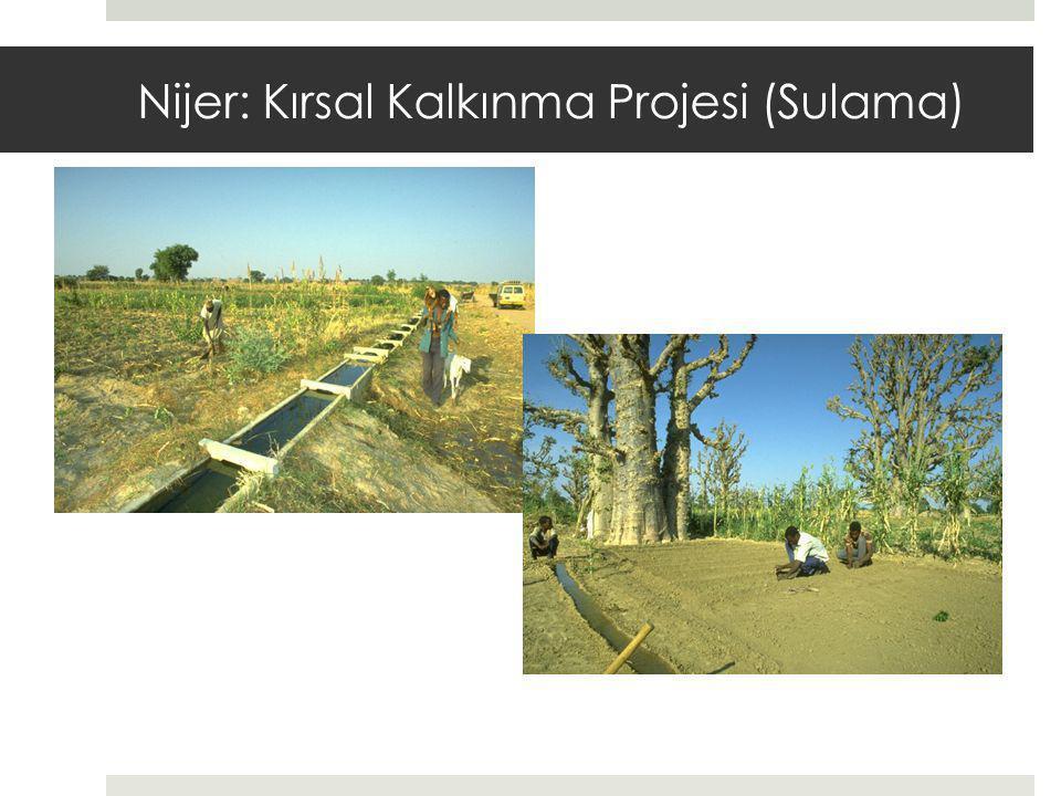 Nijer: Kırsal Kalkınma Projesi (Sulama)