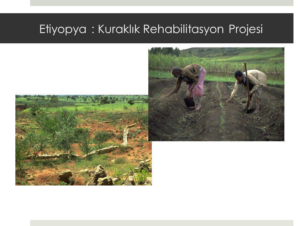 Etiyopya : Kuraklık Rehabilitasyon Projesi