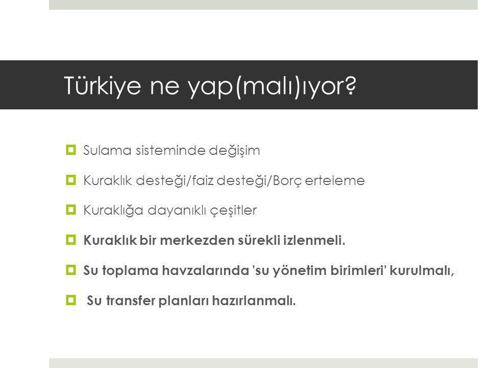 Türkiye ne yap(malı)ıyor.