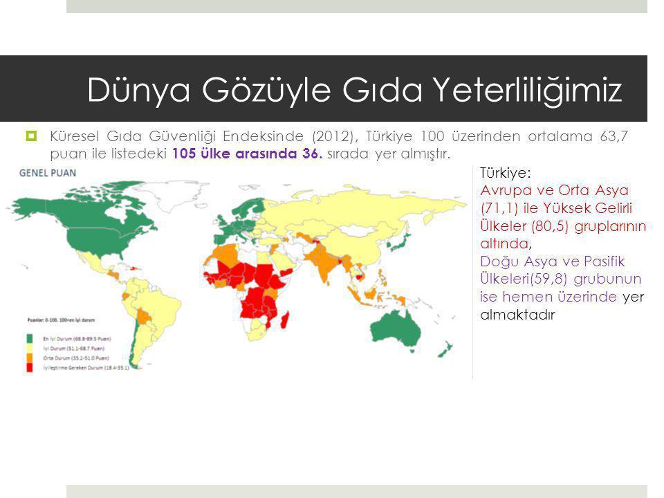 Dünya Gözüyle Gıda Yeterliliğimiz  Küresel Gıda Güvenliği Endeksinde (2012), Türkiye 100 üzerinden ortalama 63,7 puan ile listedeki 105 ülke arasında 36.