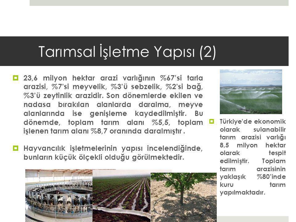 Tarımsal İşletme Yapısı (2)  23,6 milyon hektar arazi varlığının %67'si tarla arazisi, %7'si meyvelik, %3'ü sebzelik, %2'si bağ, %3'ü zeytinlik arazidir.