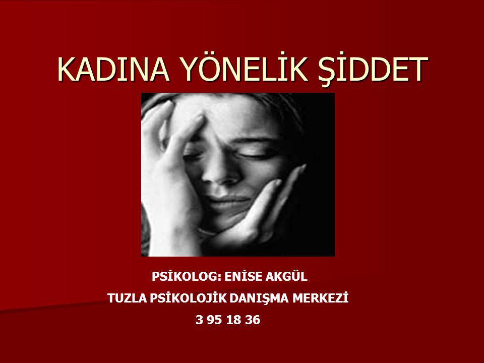 Kadına karşı şiddet, en yaygın ve sık olarak rastlanılan kadının insan hakları ihlallerindendir.