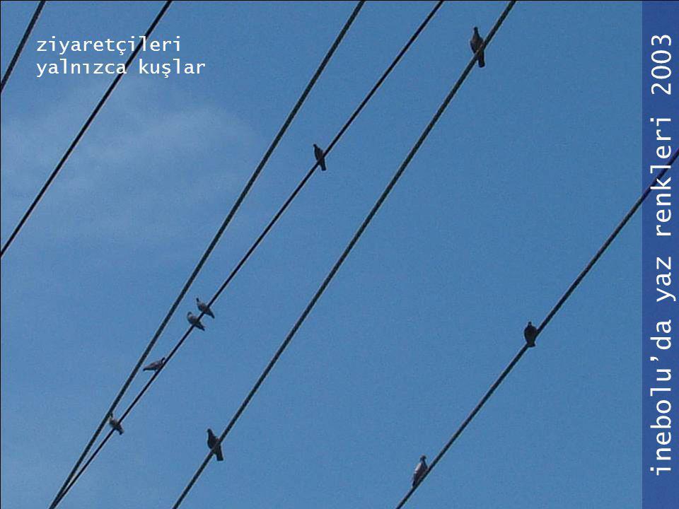 inebolu'da yaz renkleri 2003 ziyaretçileri yalnızca kuşlar