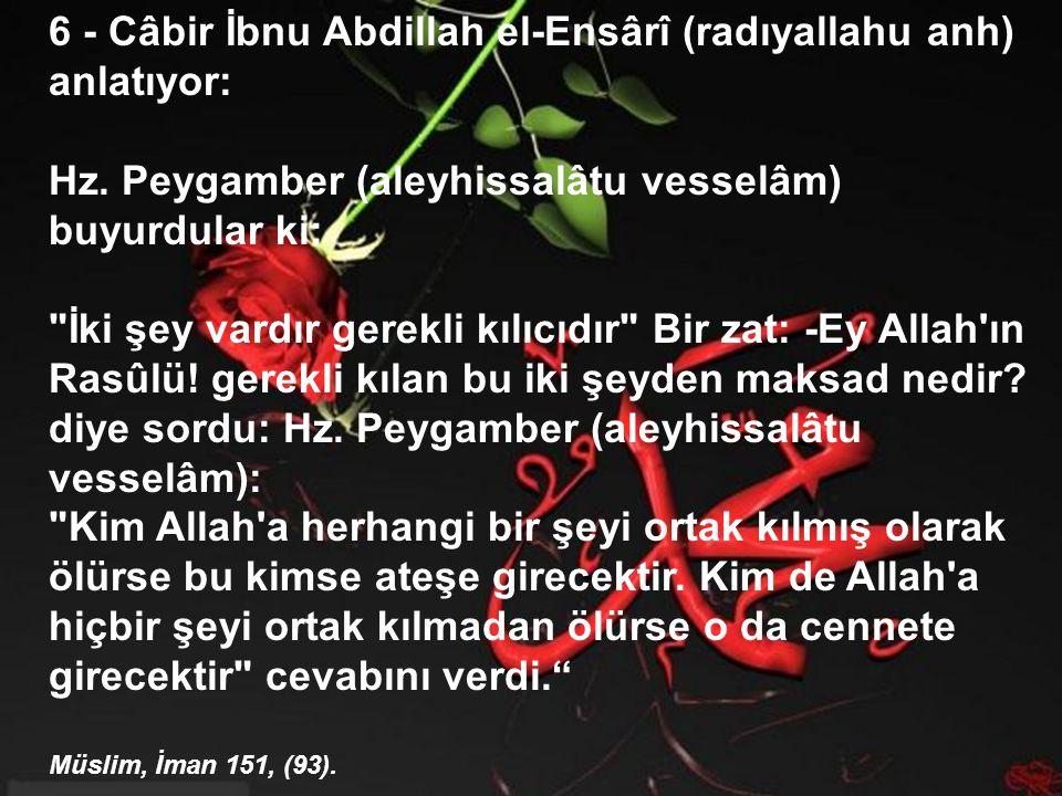 6 - Câbir İbnu Abdillah el-Ensârî (radıyallahu anh) anlatıyor: Hz.