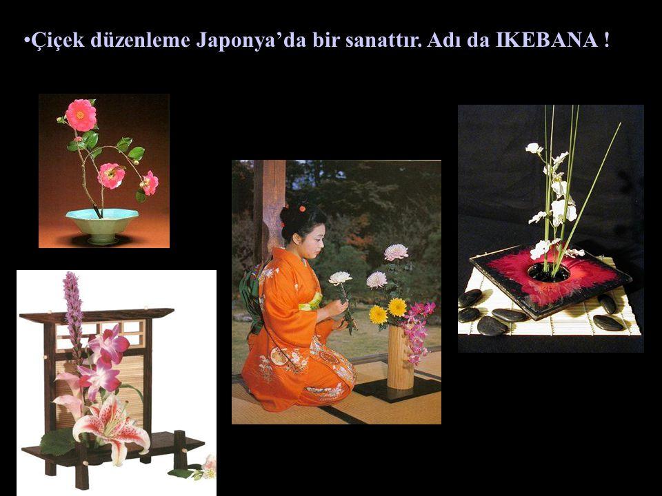 Çiçek düzenleme Japonya'da bir sanattır. Adı da IKEBANA !