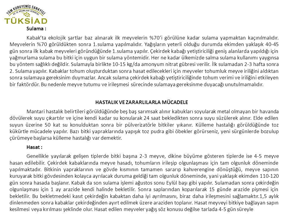 Sulama : Kabak'ta ekolojik şartlar baz alınarak ilk meyvelerin %70'i görülüne kadar sulama yapmaktan kaçınılmalıdır.