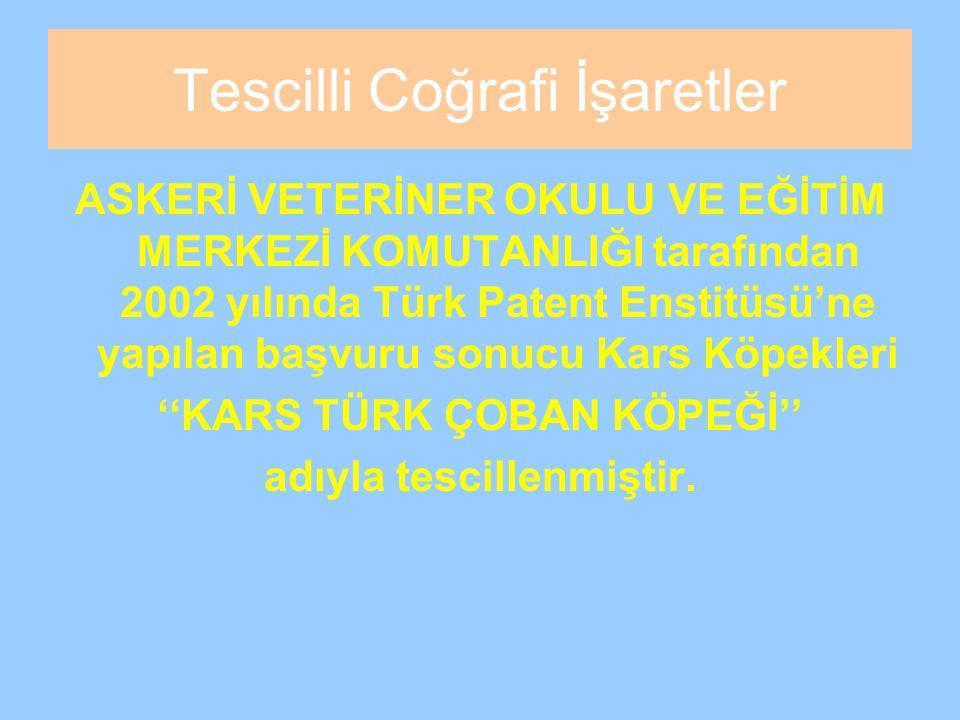 Tescilli Coğrafi İşaretler ASKERİ VETERİNER OKULU VE EĞİTİM MERKEZİ KOMUTANLIĞI tarafından 2002 yılında Türk Patent Enstitüsü'ne yapılan başvuru sonucu Kars Köpekleri ''KARS TÜRK ÇOBAN KÖPEĞİ'' adıyla tescillenmiştir.