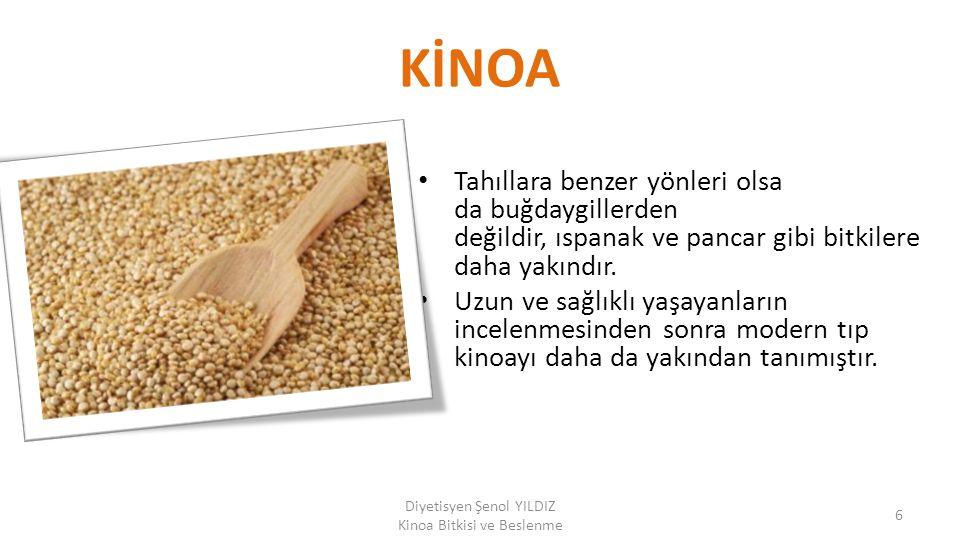 KİNOA Tahıllara benzer yönleri olsa da buğdaygillerden değildir, ıspanak ve pancar gibi bitkilere daha yakındır. Uzun ve sağlıklı yaşayanların incelen