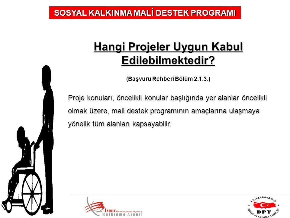 SOSYAL KALKINMA MALİ DESTEK PROGRAMI Hangi Projeler Uygun Kabul Edilebilmektedir? (Başvuru Rehberi Bölüm 2.1.3.) Proje konuları, öncelikli konular baş