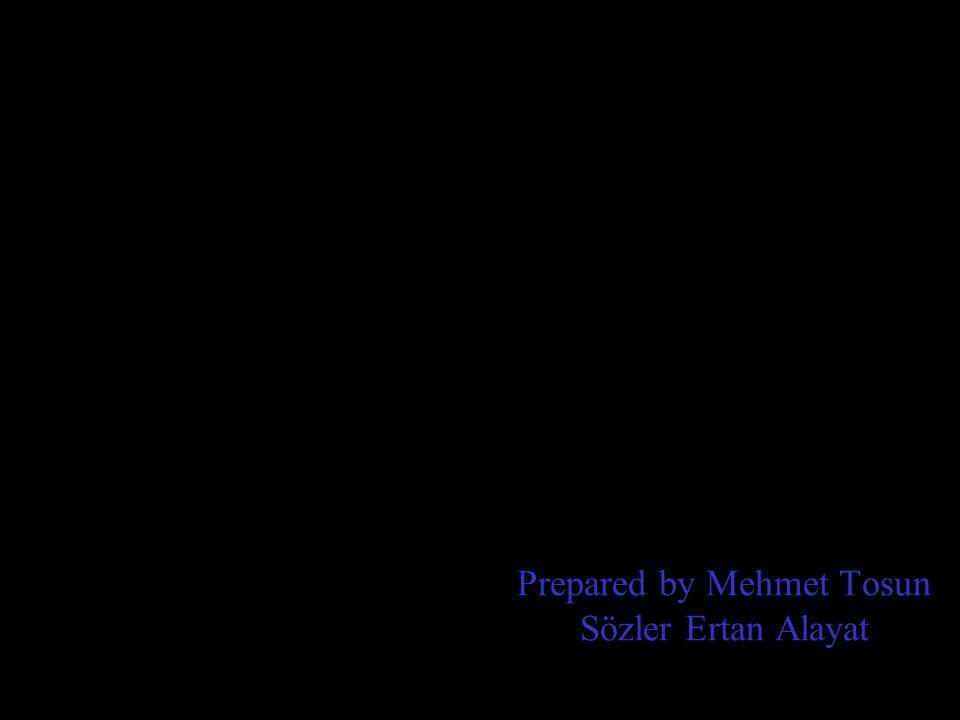 Prepared by Mehmet Tosun Sözler Ertan Alayat